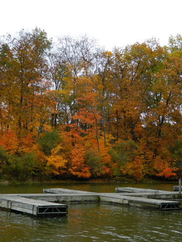 Lake Mingo boat docks in Fall