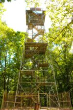 Forest Glen observation tower